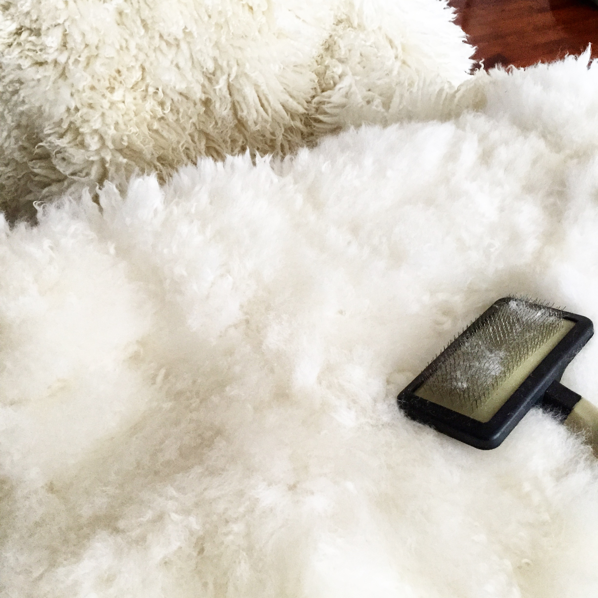 Sheepskin Rug Dry Cleaning: Expert Advice - Freshcleaning